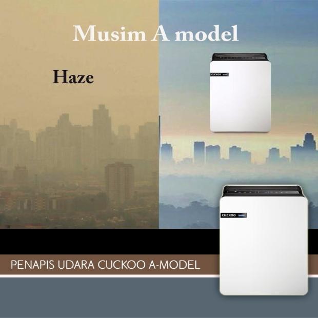 a-model haze